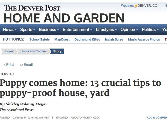 The Denver Post shared tips on how to puppy proof the house and yard.
