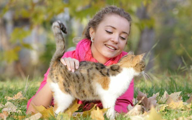 Clarie wants to make sure her kitty doesn't develop signs of diabetes in cats.