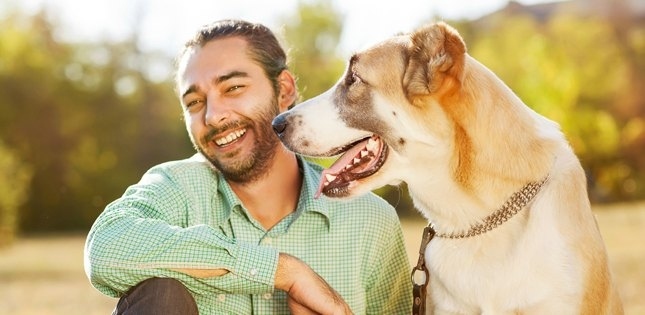 Visiting the park is part of the daily routine for Josh and Diesel -- as is dog dental care!
