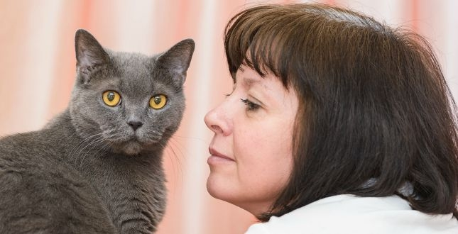 Smoky recently visited our animal clinic for veterinary surgery. He is recovering well!