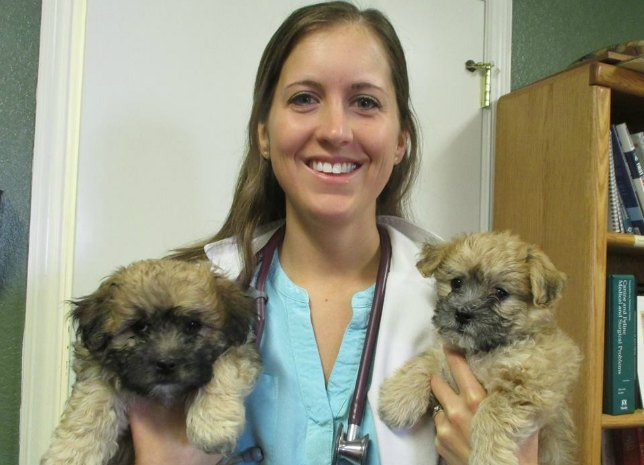 Dr. Ivy is a Castle Rock veterinarian who loves puppy visits!