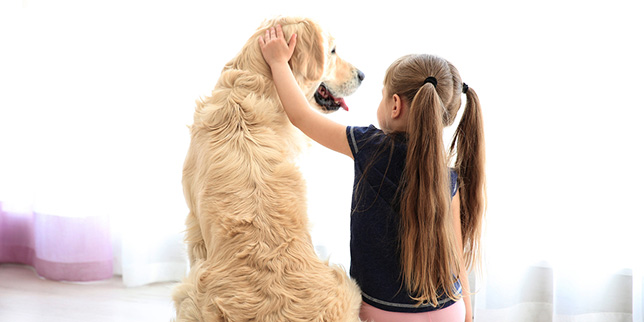 Sophie, a little girl, rubs the ears of her older dog, Bailey.