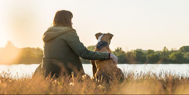 Woman and dog look off into the distance at sunset.