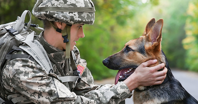 Casey knows his dog, Max, will be well cared for while he's away on deployment.