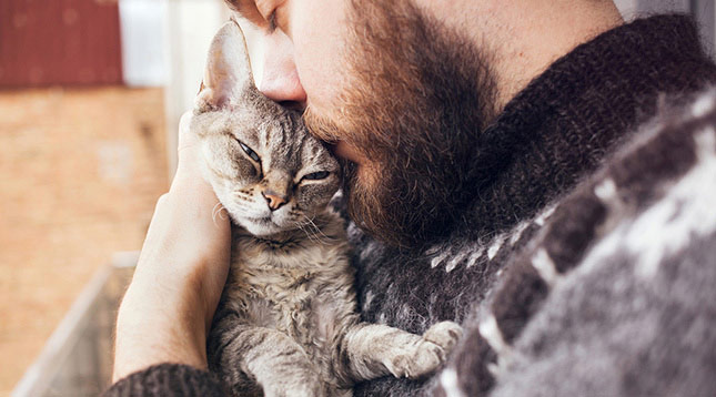A man cuddles with his cat, Sam, who's been struggling with cat diarrhea.