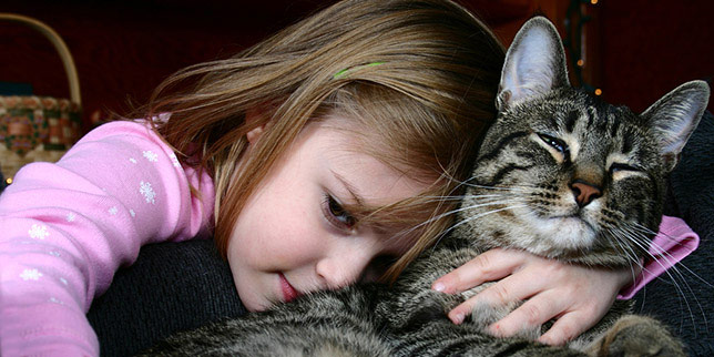 Madeline, a young girl, hugs on Maisie, her beloved cat with lymphoma.
