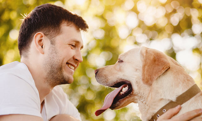 Matthew rubs his yellow labrador's neck. His dog is feeling much better after getting her bleeding scent glands treated.