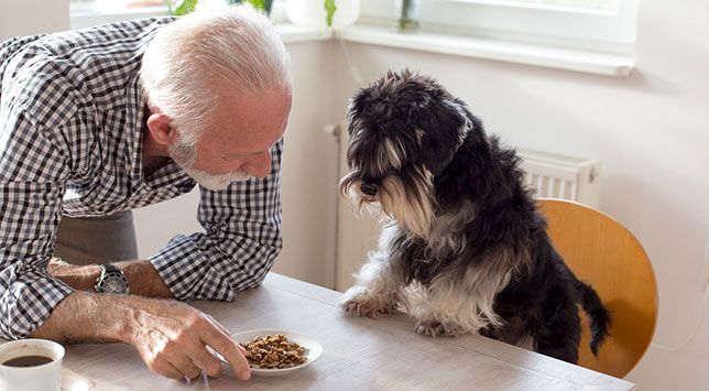 James serves his dog, Sparky, a plate of dog food that includes meat and grains.